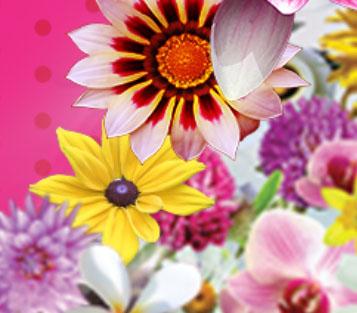 Northwest-FlowerGarden-Show-pix.jpg