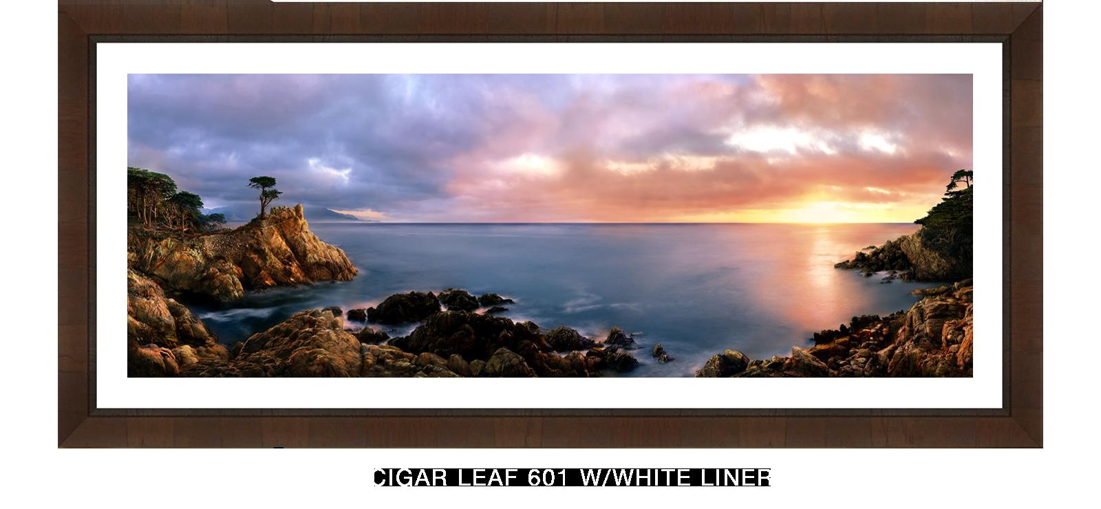Carmel-Cigar-Leaf-601-w_Wht-Liner-T.png