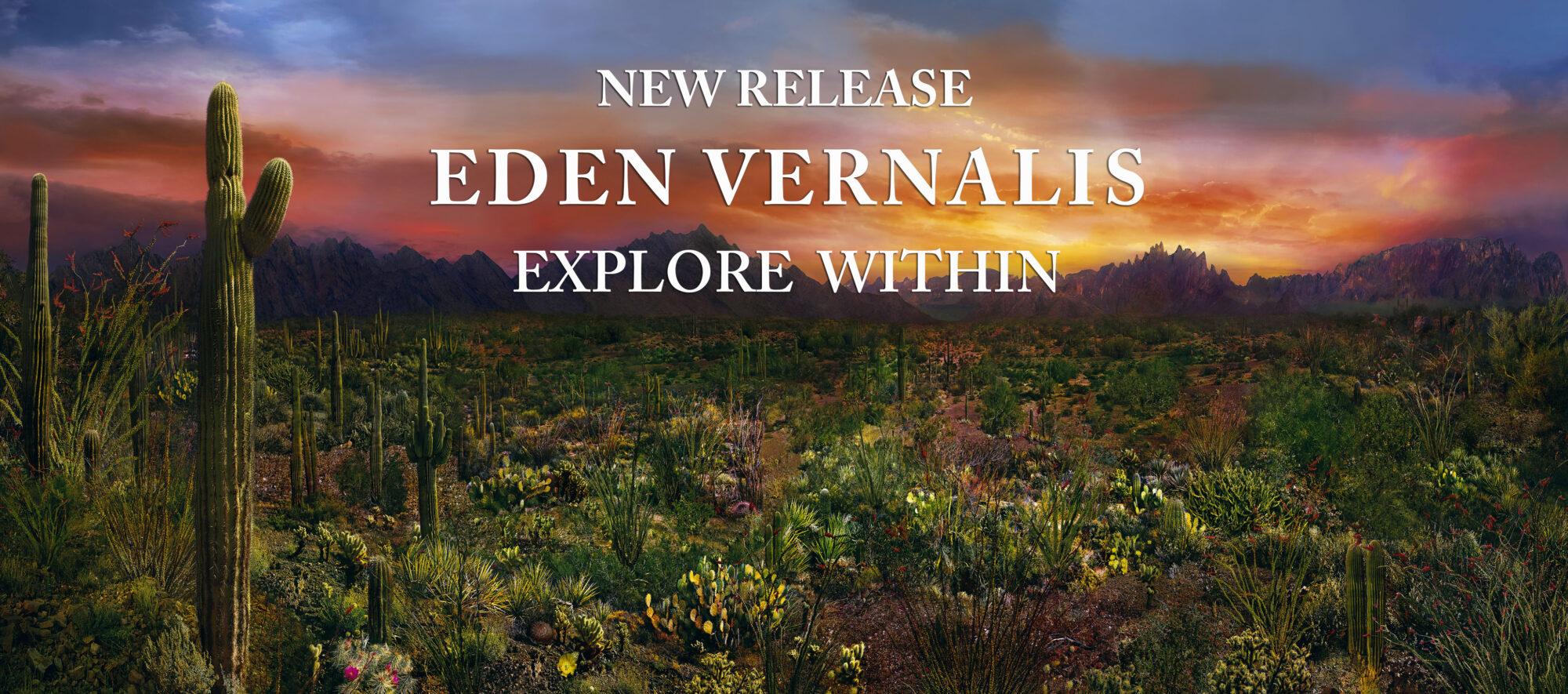 Ian Ely Fine Art Photography, Eden Vernalis, Arizona Desert